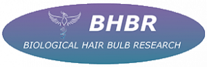Biological Hair Bulb Research